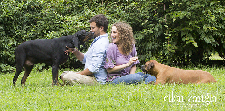 Pet Photography, Dog Pictures, Dog Photographs, Leesburg Pet Photographs, Leesburg Dog Pictures