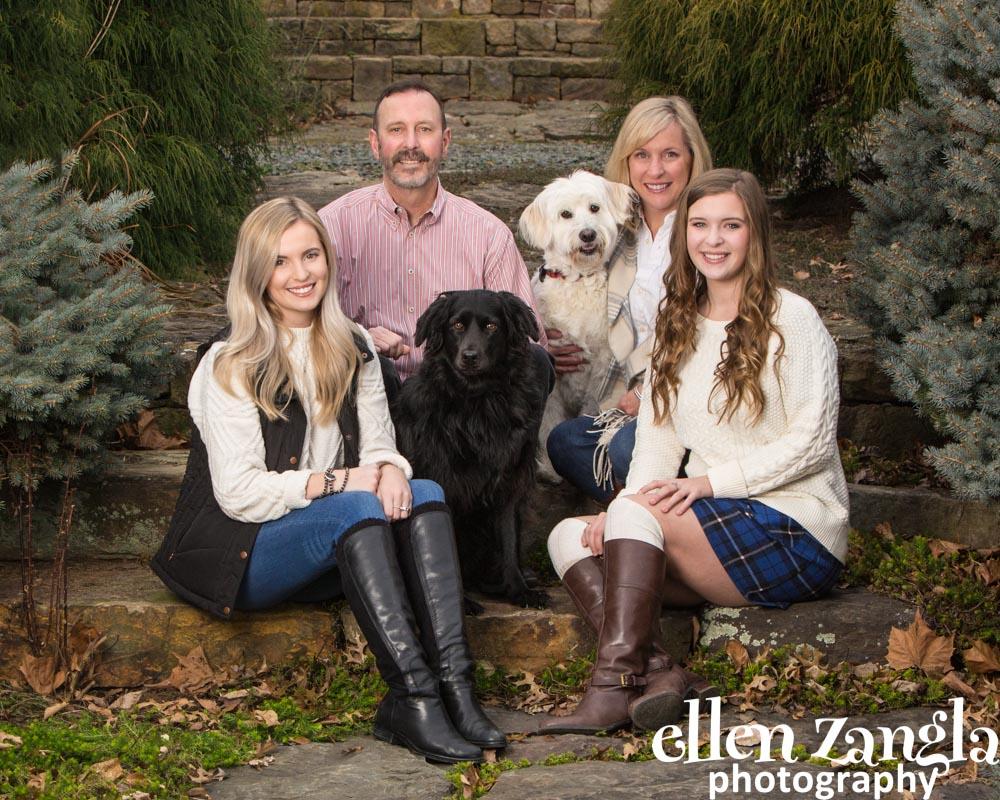 Ellen Zangla Photography, Dog Photographer, Loudoun County, Goldendoodle Photo