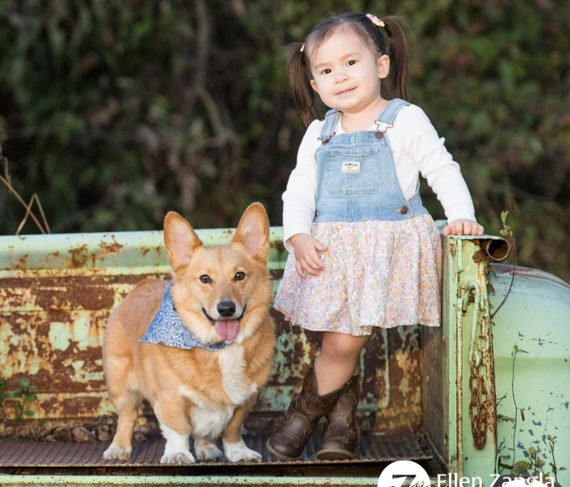 Photo of little girl and her dog by Ellen Zangla Photography in Loudoun County VA